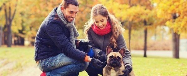 6 Formas en que tu perro puede mejorar tu vida amorosa