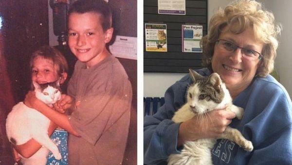 Cat regresa milagrosamente a la familia después de 14 años