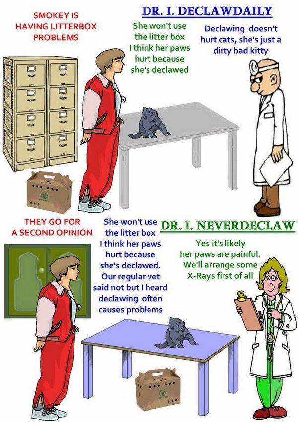 Cartel de los gatos de declawing