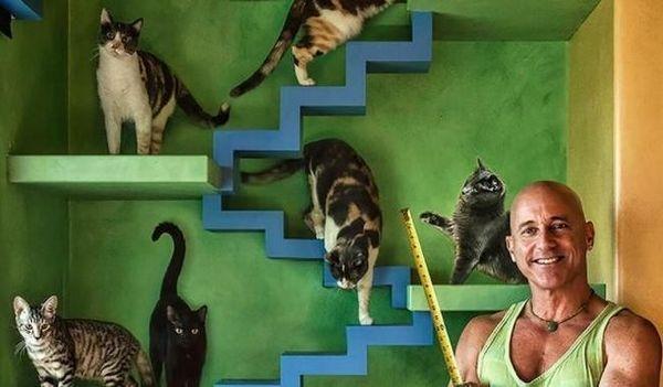 Guy transforma su casa en utopía para 22 gatos