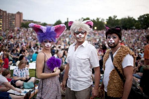 Oakland fue el anfitrión de su segundo festival de video de gatos internacionales