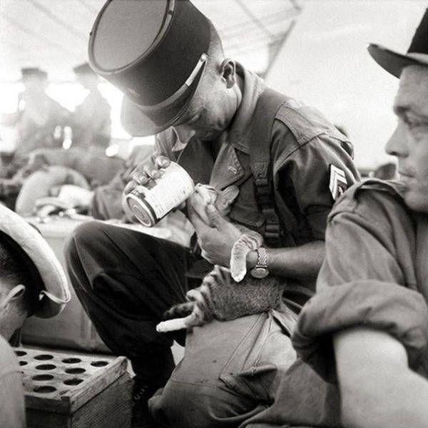 Soldados pasando tiempo abrazados a los gatos