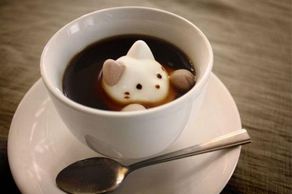 ¡Ahora hay malvaviscos de gato para tu chocolate caliente!